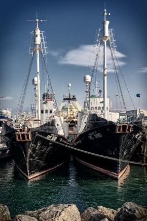 Reykjavik-harbour-1